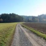 Homeville Veľká Lúka - Pohľad na pozemky